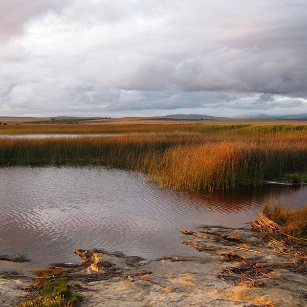 Towards a sustainable Agulhas Plain