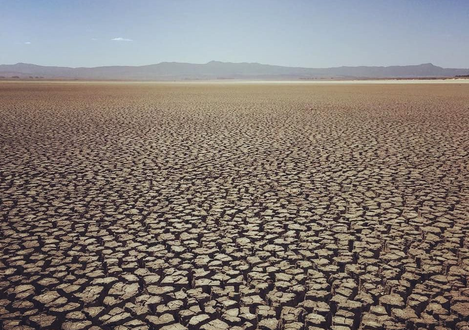 The good and the bad of the drought