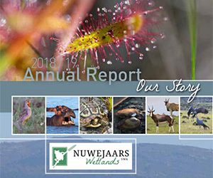 Our year in review (read our NWSMA Annual Report)