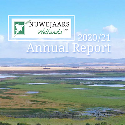 A year with a difference: Our 2020/21 annual report